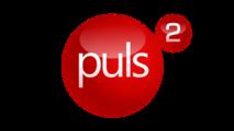 puls-2.png